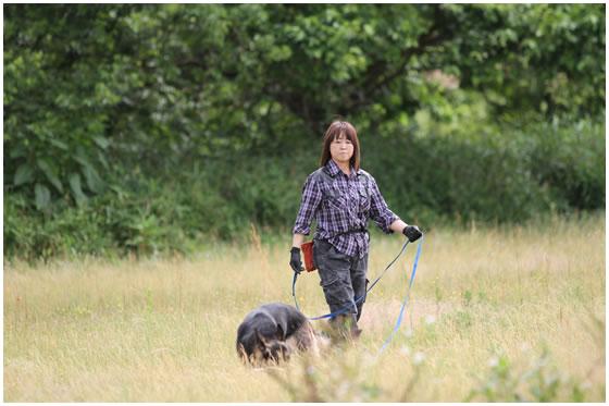 嘱託警察犬の訓練風景