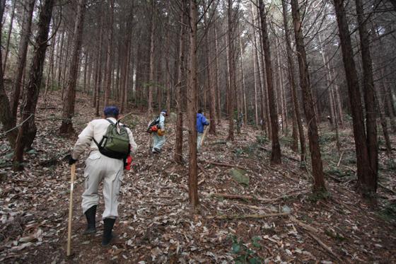 大藤山を登るメンバー