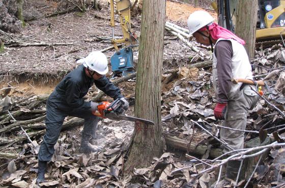写真:実際に木を切る研修生と見守る小林さん