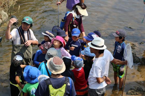 8月1日 アシレンジャー「宮川河口域での生物観察会」