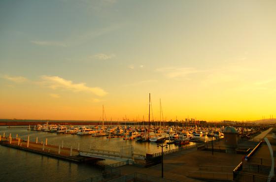 約700隻を係留できる新西宮ヨットハーバーは今年開港20年。体験クルージングもできる。