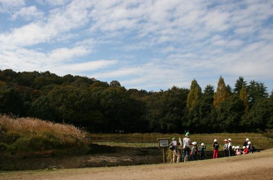 県立三木山森林公園