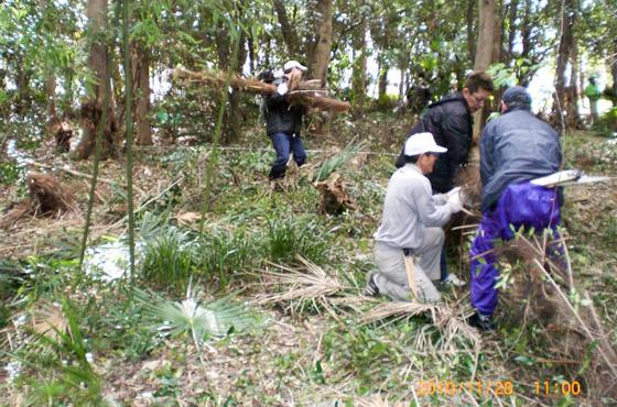 自然・環境科学の専門家を招き、住民の力で整備を進めた「佐僕丘の森」での大掃除