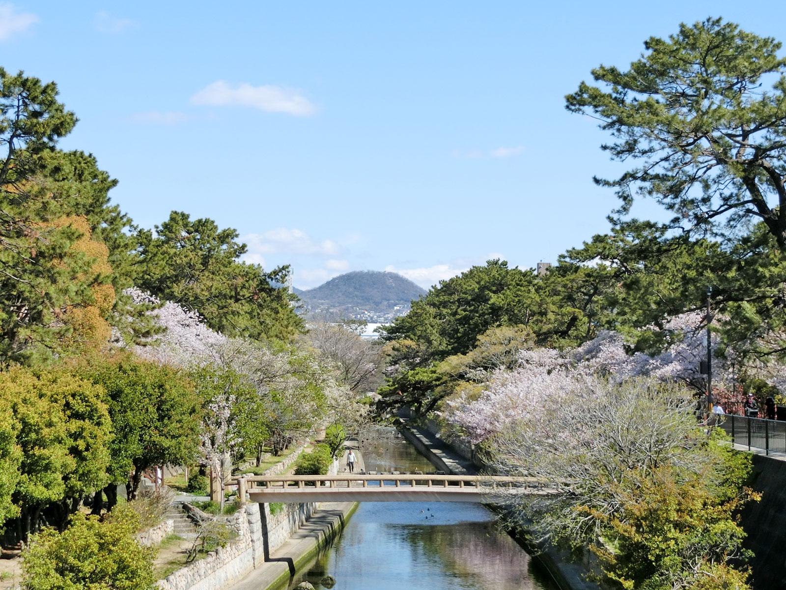 岡本さんが好きな甲山が写る。