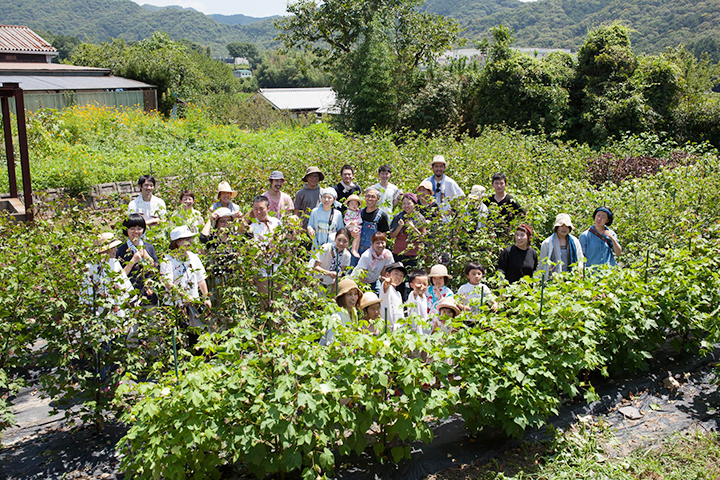 畑作業での集合写真、たくさんの人が綿花栽培プロジェクト「365(サブロク)コットン」に参加している。
