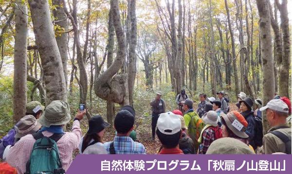 自然体験プログラム「秋扇ノ山登山」でガイドの説明を聞く参加者たち